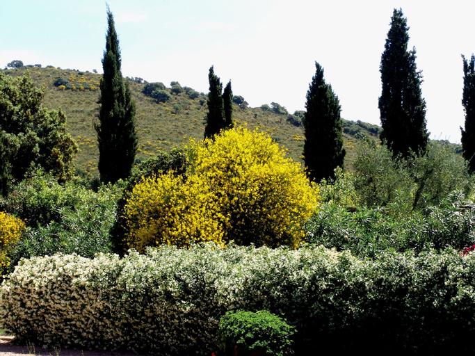 Agriturismo Fattoria Il Casalone, Grosseto
