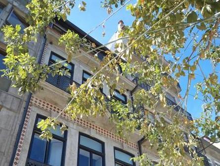 Vivacity Porto - Rooms & Apartments, Porto