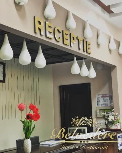 Hotel Belvedere, Botosani