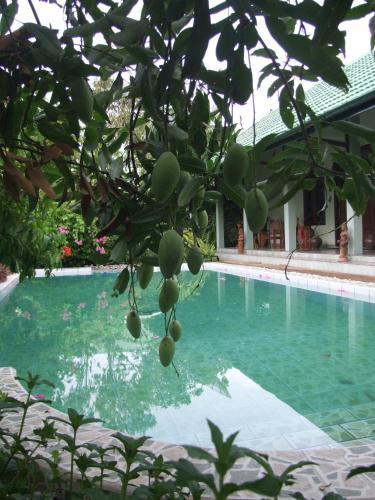 Rumah Sawah, Bantul