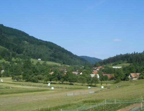 Guest House Kmetija, Ribnica