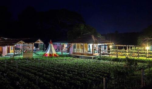 Chiang Dao Story Camp, Chiang Dao