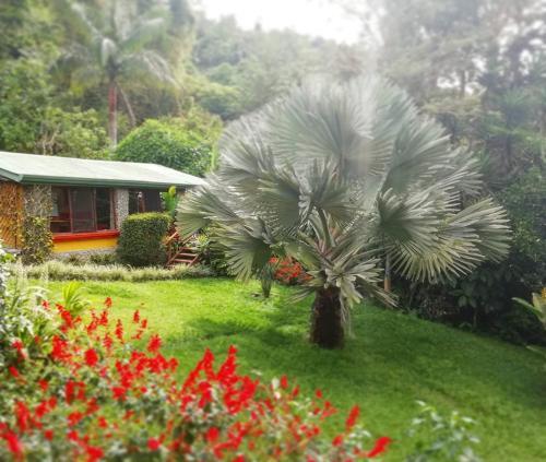 Chalet Orosi, Paraíso