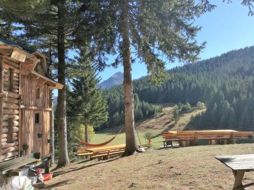 Lodge Between The Pine Trees, Dečani