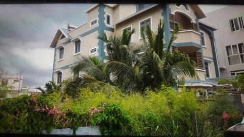 Palm Villa,