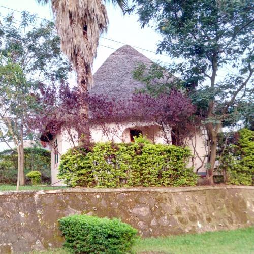 Victoria gardens, Bunyaruguru