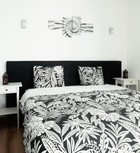 Pirata hostel Milfontes, Odemira
