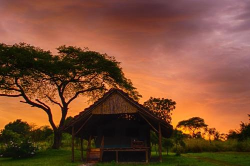 Bwana Tembo Safari Camp, Nwoya