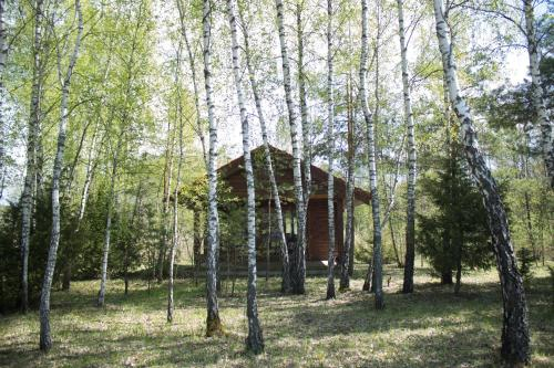Cozy remote cabin on a lakeshore, Lazdijų