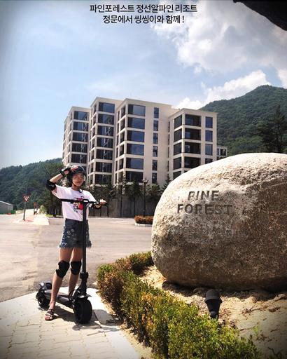 PINE FOREST, Jeongseon