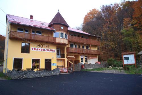Vila Transilvania, Turia