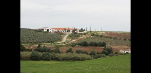 Quinta do Castelo, Beja