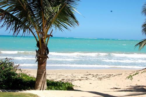 Isla Verde by the Beach,
