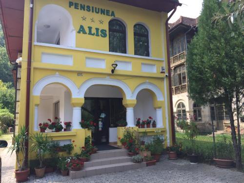 Pensiunea Alis, Calimanesti
