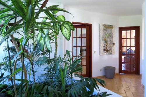 Green Moments Guest House Portimao, Portimão