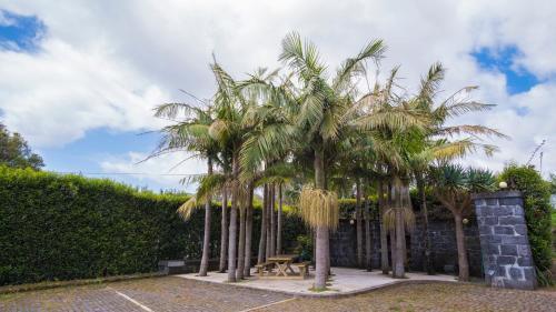 Quinta do Torcaz, Horta