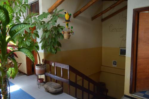 Hostal Condor Matzi, Pujilí