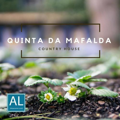 Quinta da Mafalda, Mira