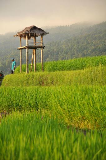 Puri Lumbung Cottages, Restaurant & Spa, Buleleng