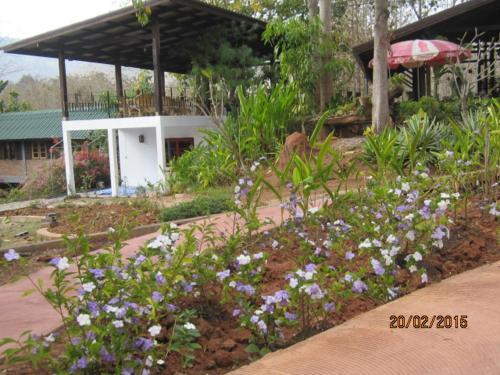 Ban Paja Resort, Dan Sai