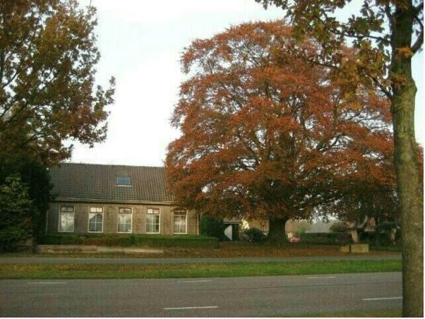 B&B Huize de Rode Beuk, Hardenberg