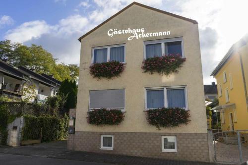 Gastehaus Ackermann, Mainz