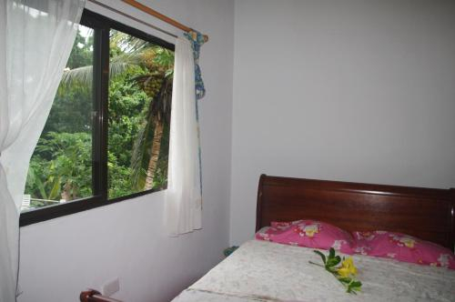 Papaya Guesthouse,