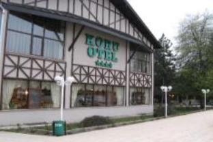 Bolu Koru Hotels Spa & Convention, Merkez