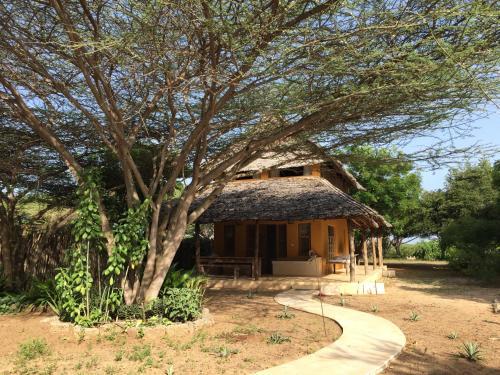 Mangrove House, Lamu West