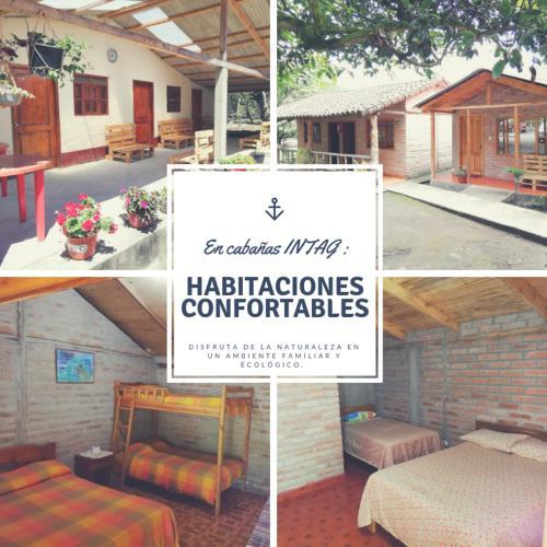 Refugio CABANAS INTAG, Cotacachi