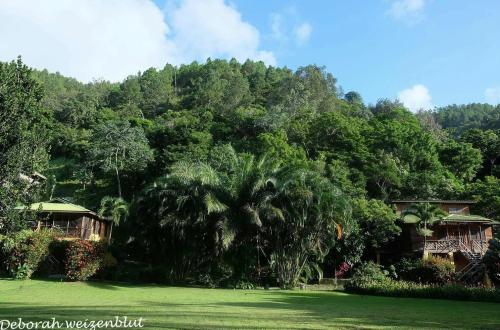 Bo's Island House, Guanaja