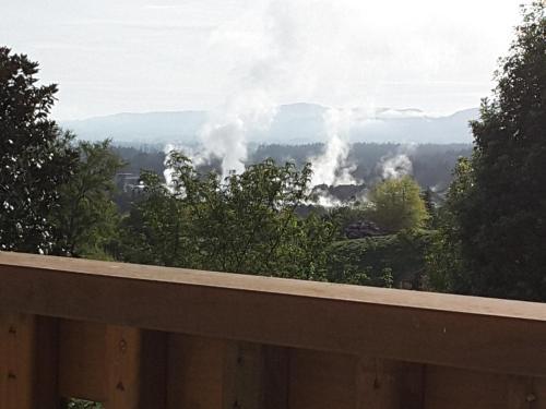 Geyser Lookout, Rotorua