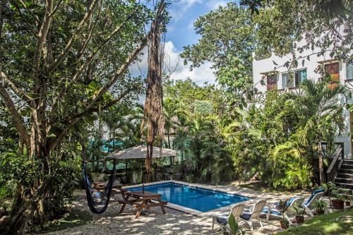 Mango Tulum Hotel, Cozumel
