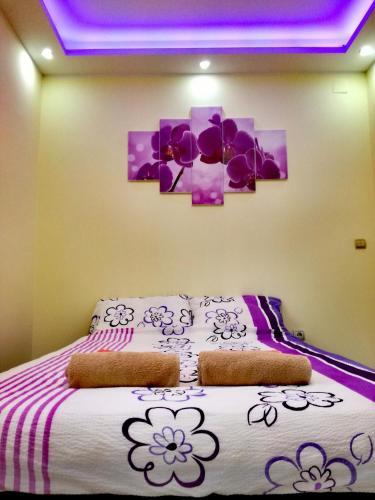 Maslina Rooms, Smederevo