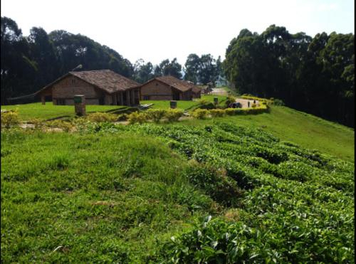 GS-K Guesthouse, Nyamagabe