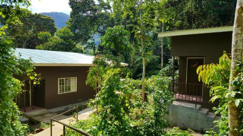 Bwindi Guest House, Kinkiizi