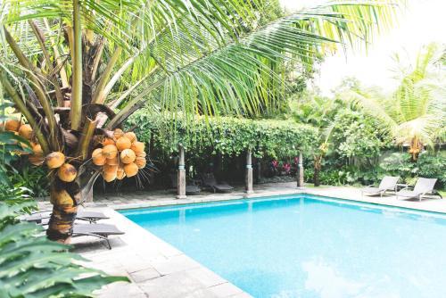 Indian Summer House, Ernakulam