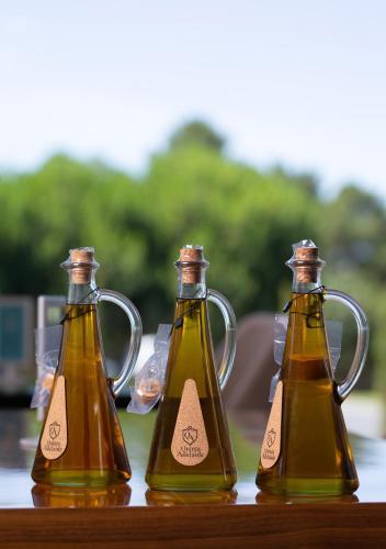 Olive Nature - Hotel & SPA da Quinta Dona Adelaide, Valpaços