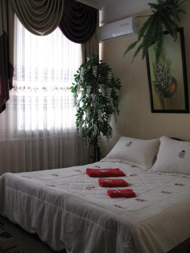 гостиница Лилия, Znamians'kyi