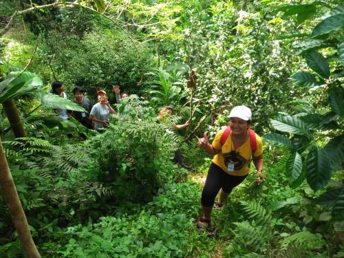 Eco-Logic, Resort for Charity, Phato