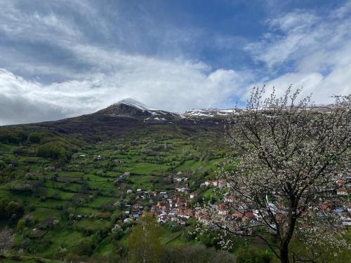 Mountain Hostel Hana,