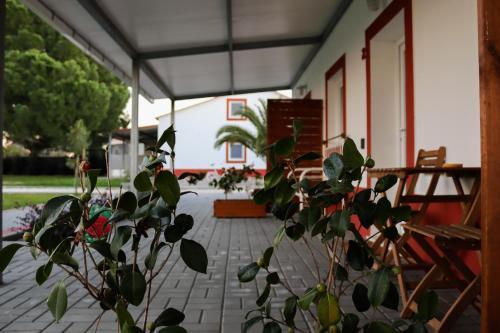 Casa das Pipas #2, Palmela