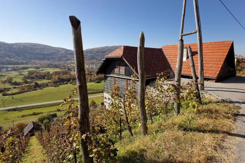 Vineyard cottage Ludvikov hram, Žužemberk