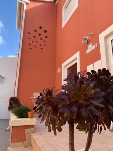 Vila dos Avos, Figueira da Foz