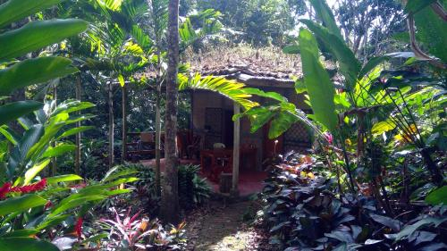 Jungle Cabins El Escondido, Matagalpa