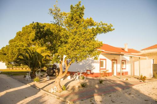 Casa das Pipas #4, Palmela