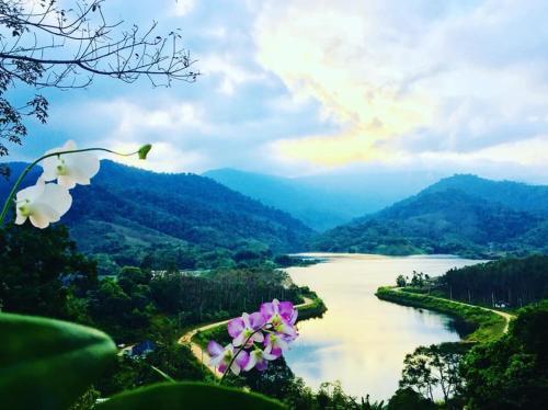 Baanhatsompaen homestay, Muang Ranong