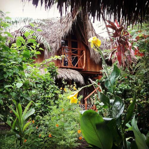 La Urraca Loca Hostel, Lago de Nicaragua