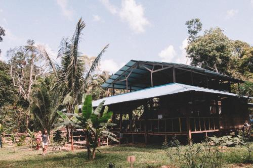 Hoja Nueva, Tambopata