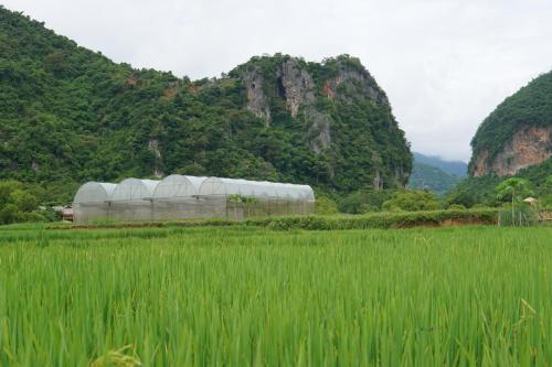 MAI HICH FARMSTAY, Mai Châu